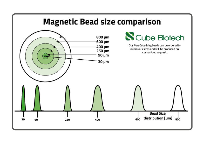 Magbead Sizes