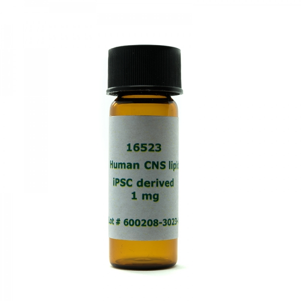 Human CNS lipids_iPSC-derived (1 mg)